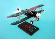 click to view Albatros models