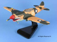 click to view P-40 Warhawk models